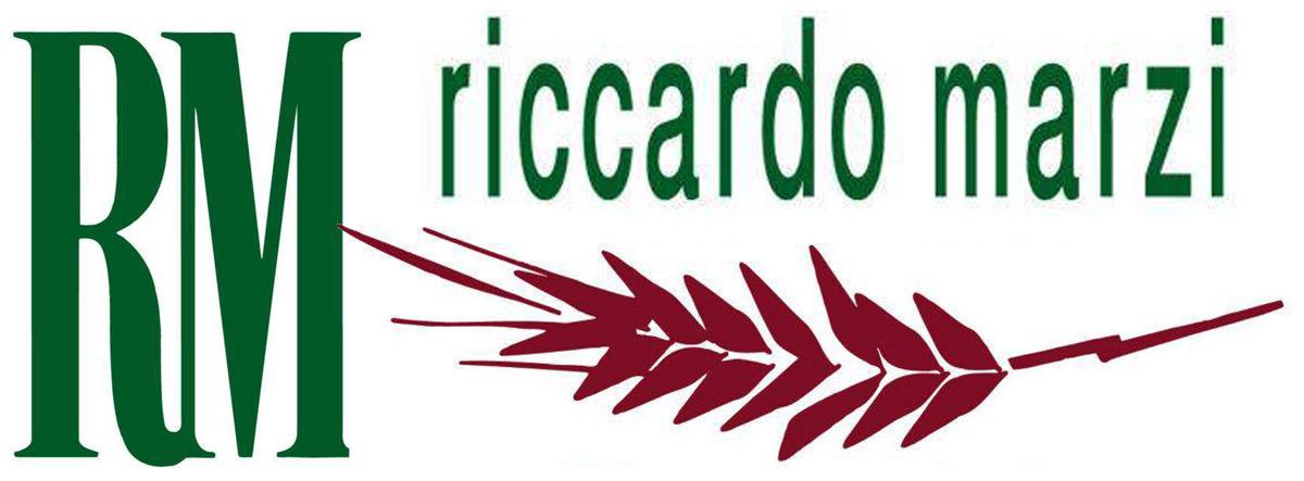 Riccardo Marzi